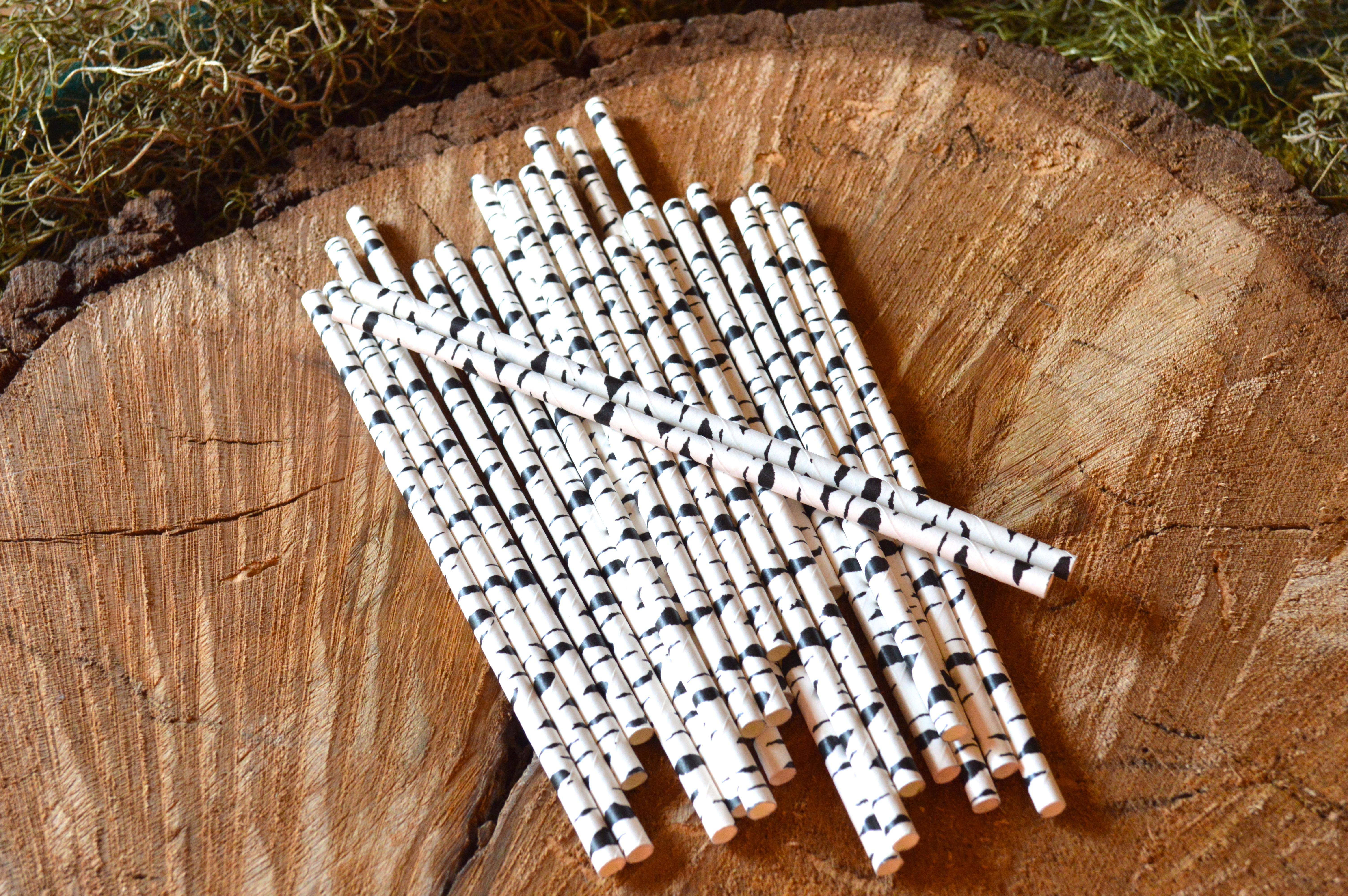 Birch Straws