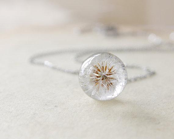 ural nature dandelion